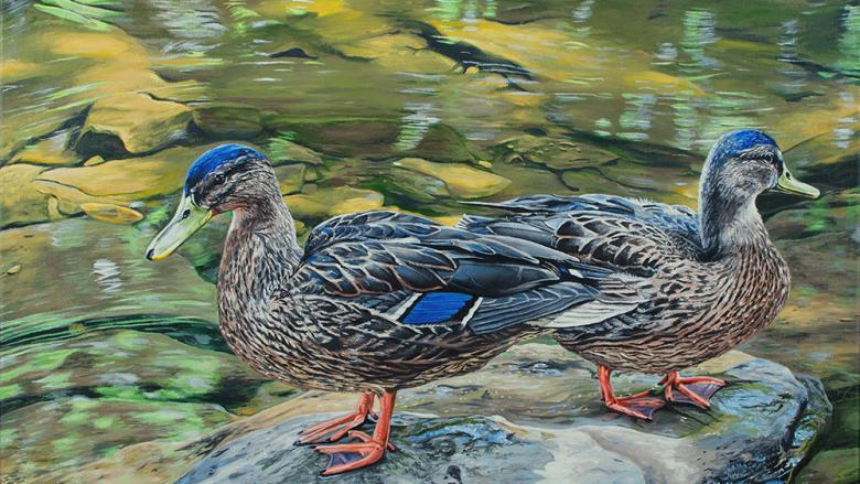 Painting of two ducks standing on a rock with a pond in the background
